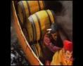 CARLING_Voyageurs_05.jpg
