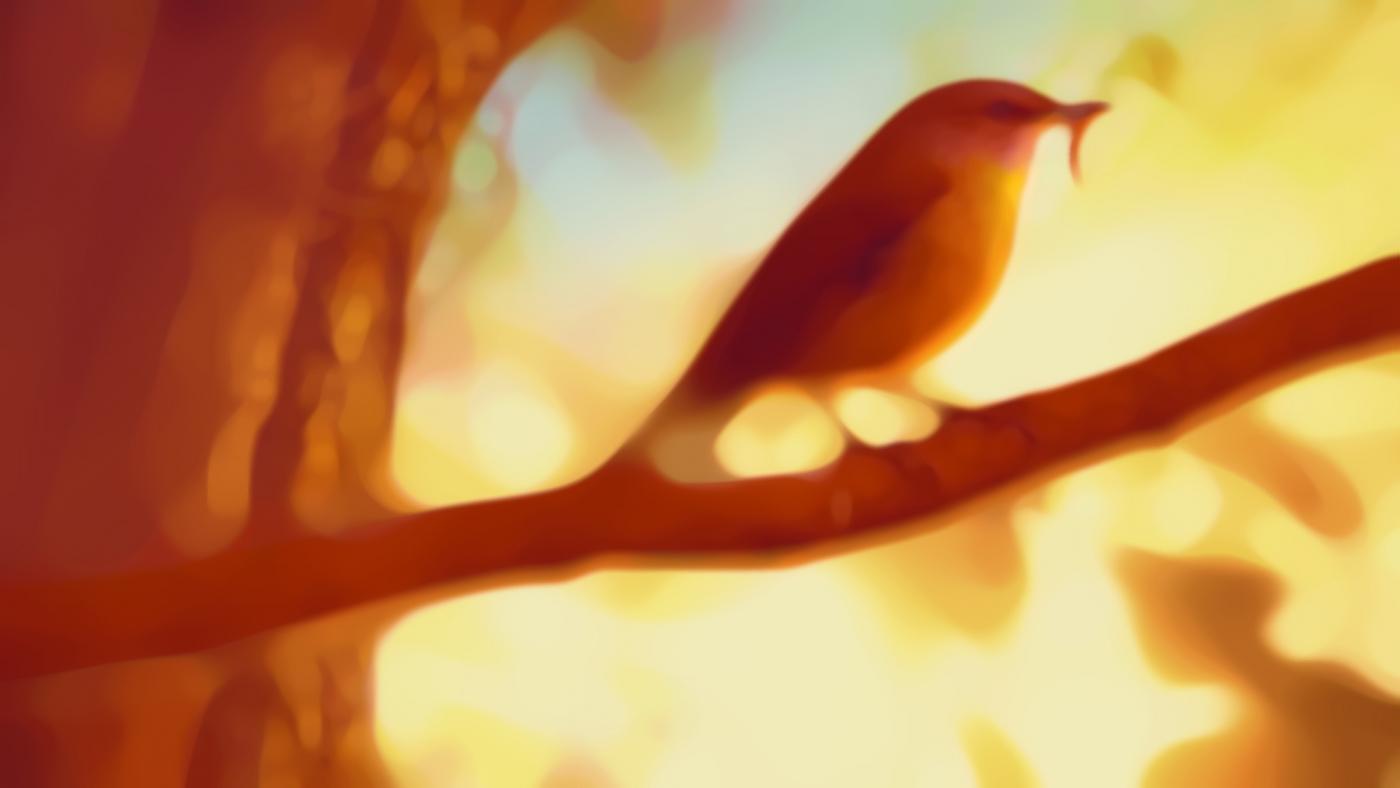 01_gmtv_tree_03_med-daub